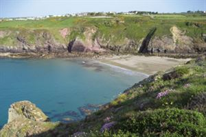 Caerfai Bay beach