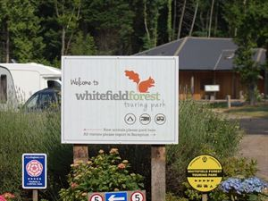 First-rate site where red squirrels are regularly seen