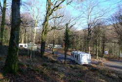 Beddgelert Forest Campsite