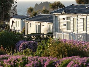 Holiday homes are in a great position with colourful plants around them