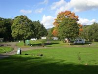 Cobleland Camping in the Forest Site