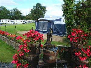 Floral displays are dotted around the campsite