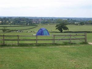 Forestside Farm campsite
