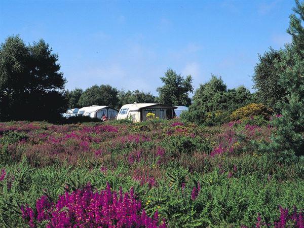 Kelling Heath is set in 250 acres of parkland