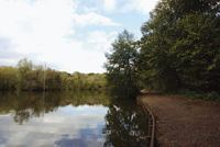 Many of the site's walks border the lake and lead through woodland
