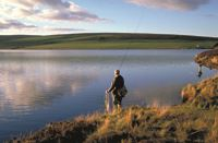 Melrose Gibson Park is ideally located for wild fishing. Image credit: VisitBritain/Britain on View