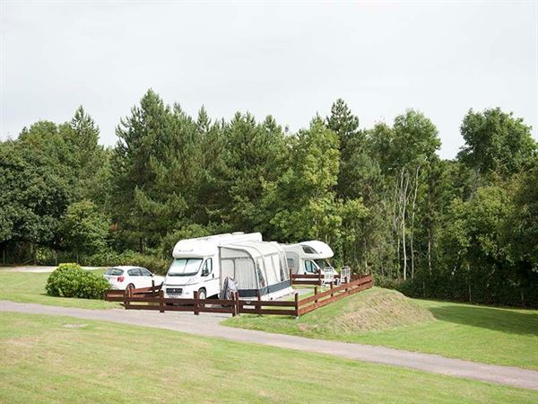 A site with plenty of space and surrounded by trees