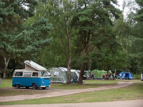All types of unit are welcome on the wooded Sandringham Club site