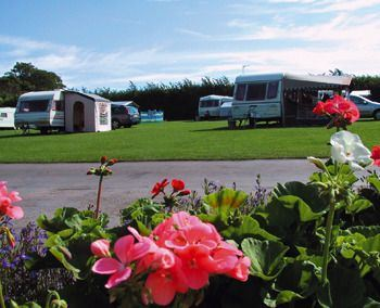 Webbers Caravan & Camping Park has many floral displays