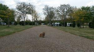 Camping de Courte Vallee