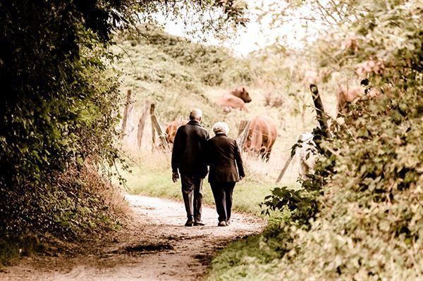 Countryside walking