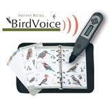rhp_birdvoice.jpg