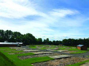 Willow Pastures lodge plots