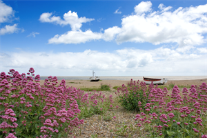 Suffolk ©Alamy