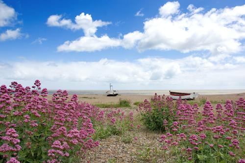 Suffolk ©Alamy