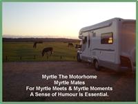 imports_myrtle-mates_52844.png