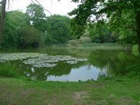 Creeksea PlaceCaravan Park