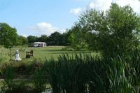 Mill Farm Leisure & Camping Site