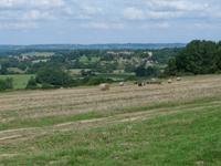 Palmers Farm Campsite