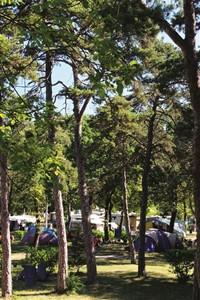 Camping Saint Disdille
