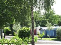 Bingham Grange Touring & Camping Park (Adults-only)