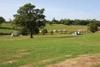 Eastnor Castle Deer Park
