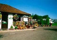 Ilminster Caravan and Motorhome Club Site