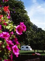 Henley Four Oaks Caravan and Motorhome Club Site