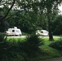 Lower Wensleydale Caravan and Motorhome Club Site