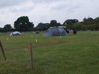 Moreton Gardens Camping Site