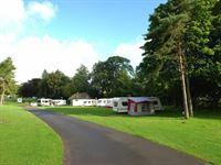 Rosetta Holiday Park