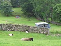 Rynys Farm Camping Site