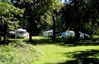 Thetford Forest Caravan and Motorhome Club Site